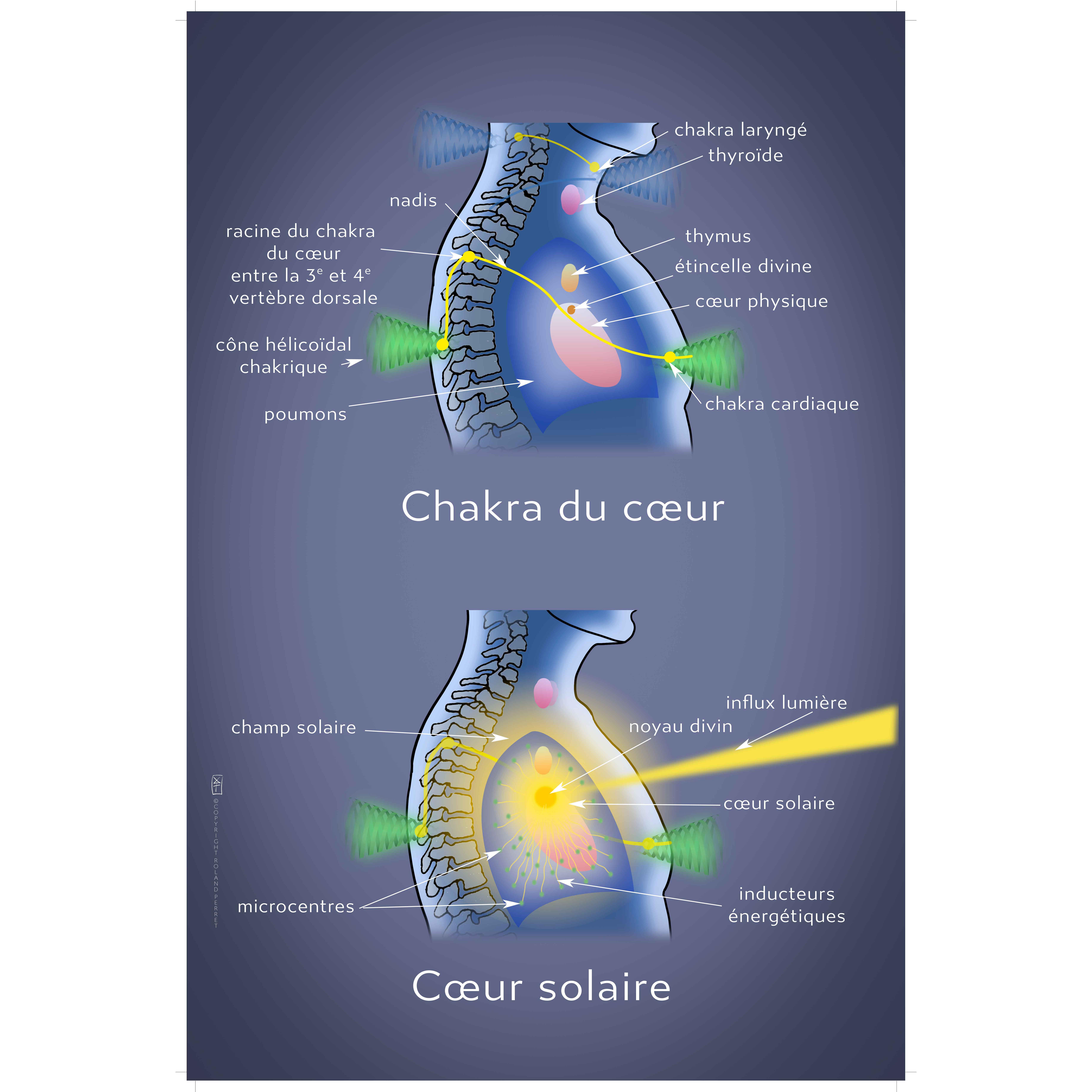 Chakra et cœur solaires